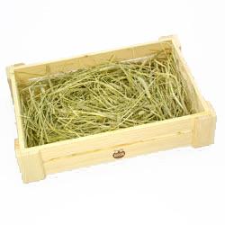 うさぎの牧草パーク