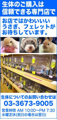 小岩ペット 店舗紹介